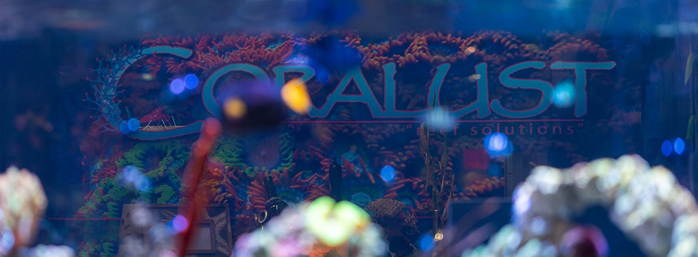 Coralust